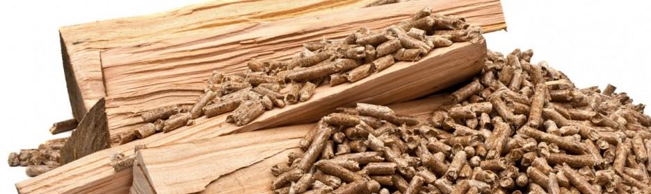 (Español) Biomasa